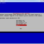 Настройка клиента DynDNS для работы с No-ip в Debian